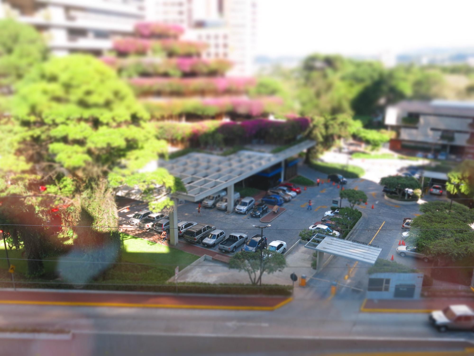 Parqueo de Margaritas